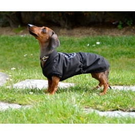 dog clothes roupa para cão roupa para pet