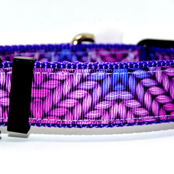 coleira para cão purple dog collar