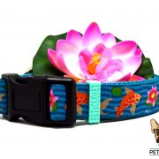 koi lake coleira dog collar 2