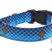 Coleira | Dog collar
