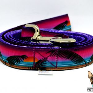 sunset trela dog leash 1