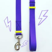 purple leash trela roxa