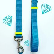 trela turquesa turquoise dog leash