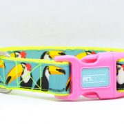 dog collar tucano fluo pink
