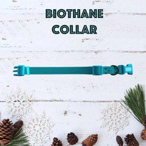 coleira de BioThane