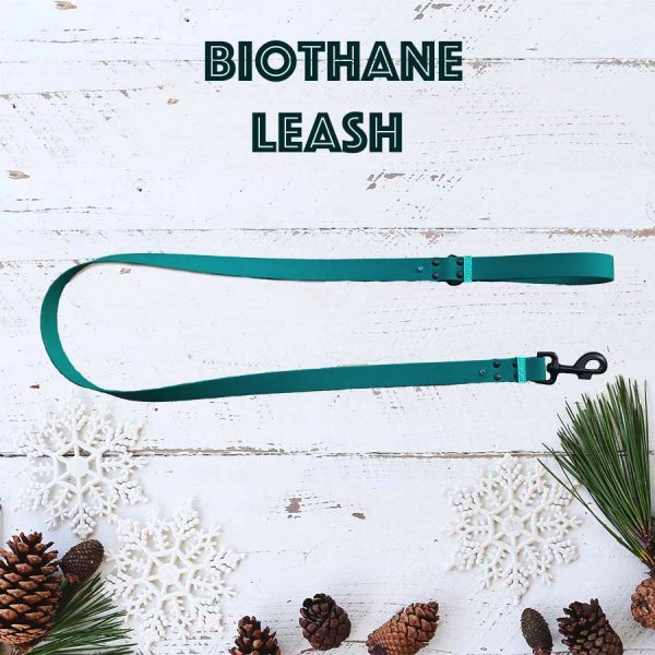 dog leash BioThane